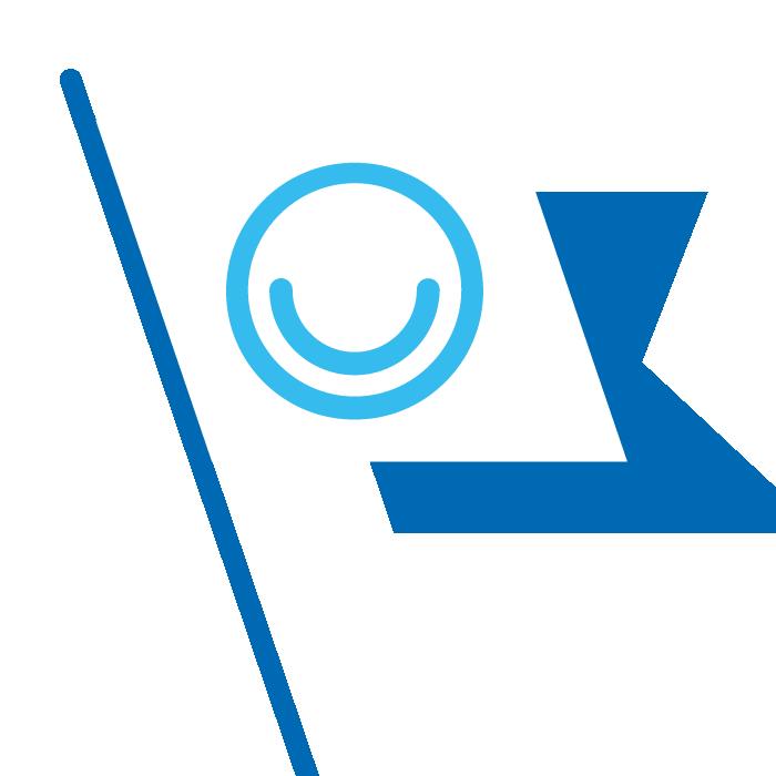 Illustration of MindMate logo on flag