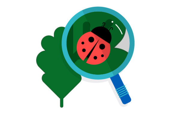 Illustration of magnifying glass looking at a ladybug