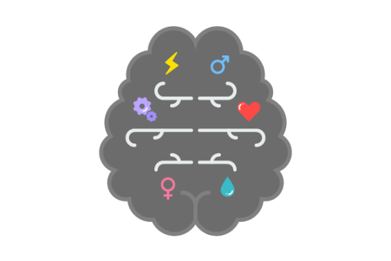 Illustration of different routes in the brain