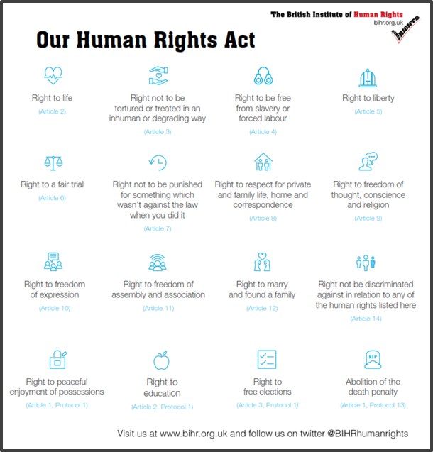 Graphic of the human rights act