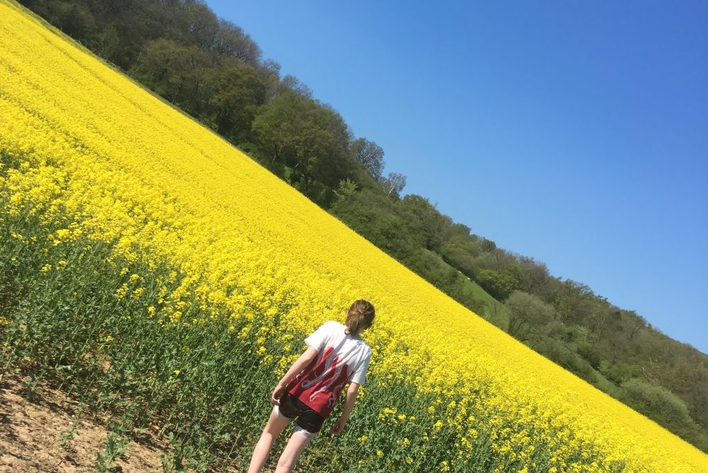 Photo of a young women in a field full of flowers