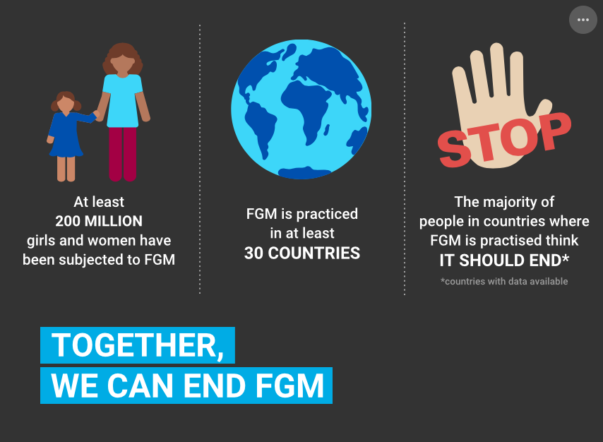 Illustration displaying the figures of FGM