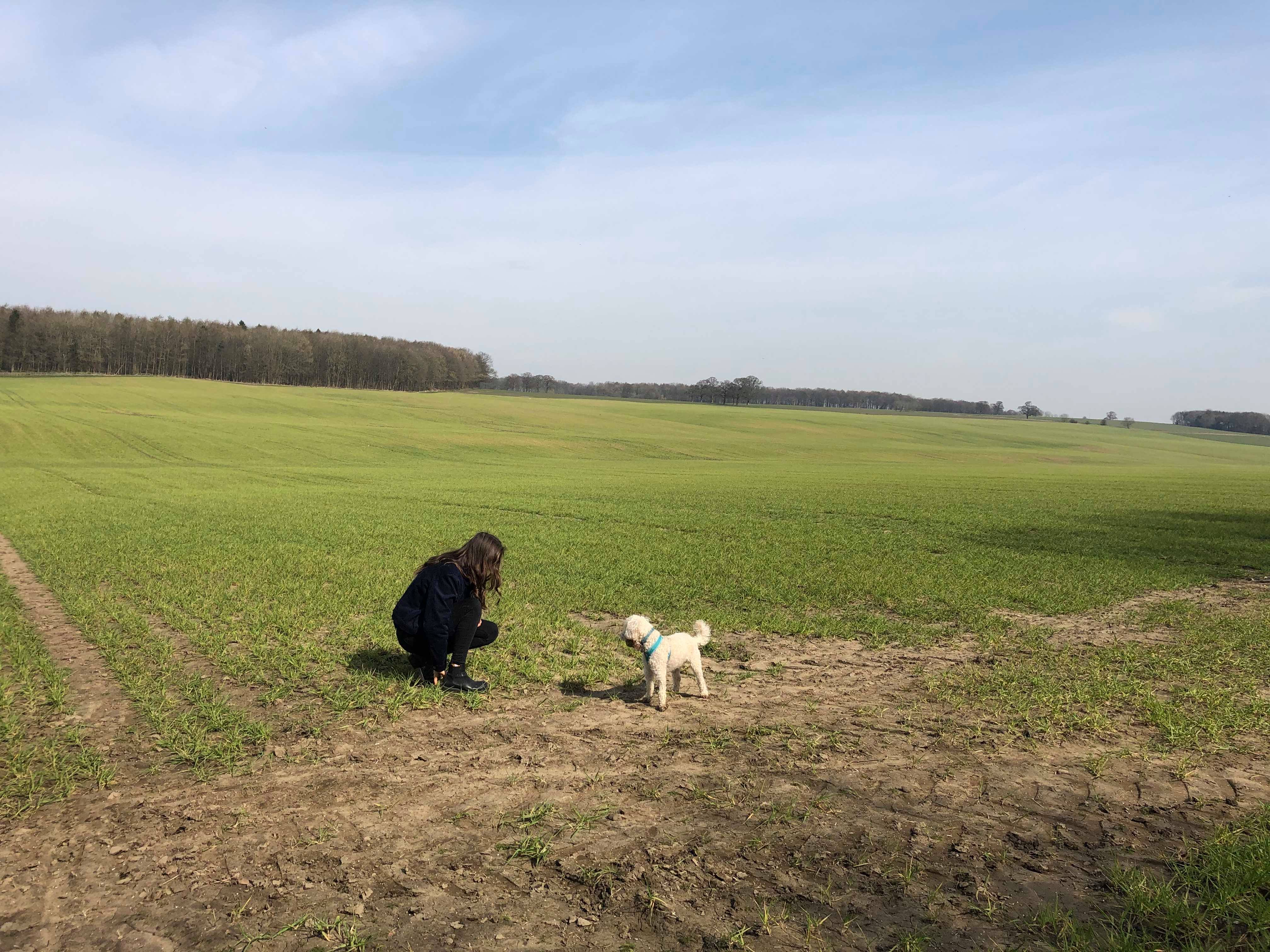 girl crouching in field playing with cute white dog