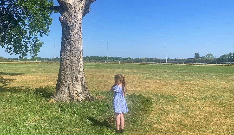 girl in sunny field